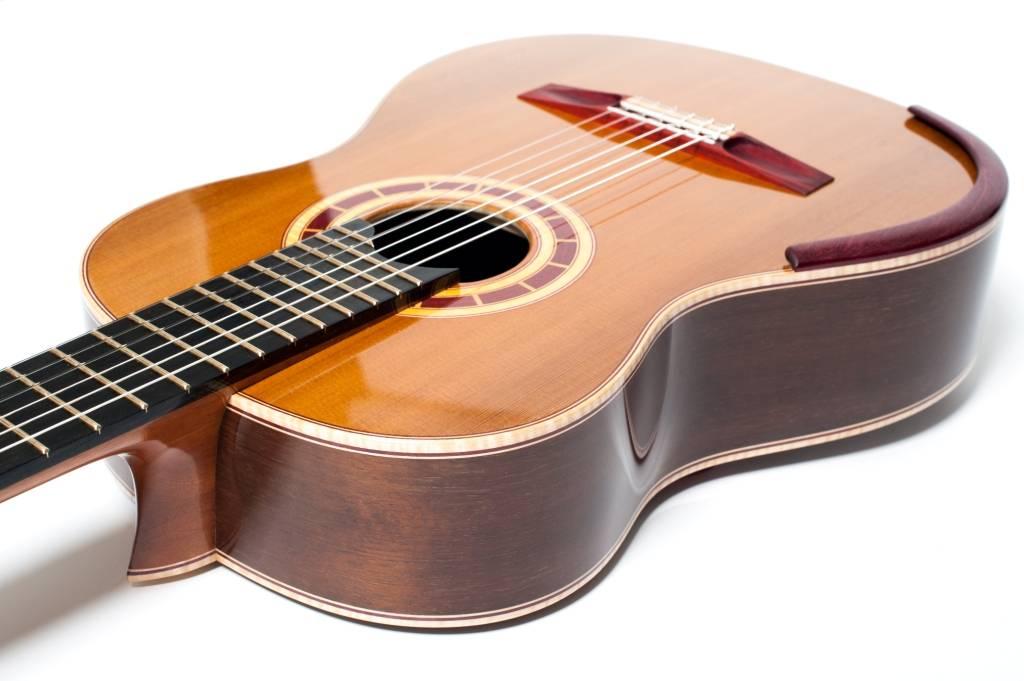 Peruvian Walnut Guitar