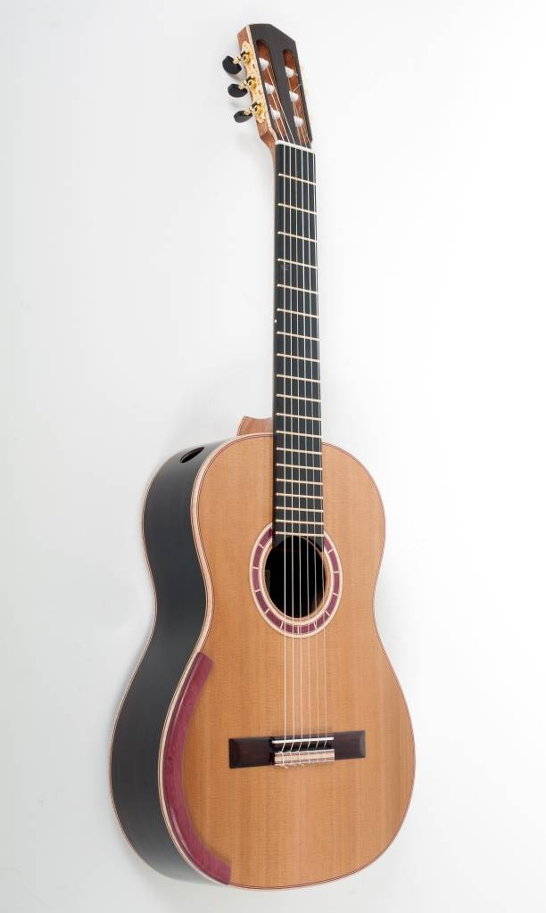 Turrentine Guitar No. 9