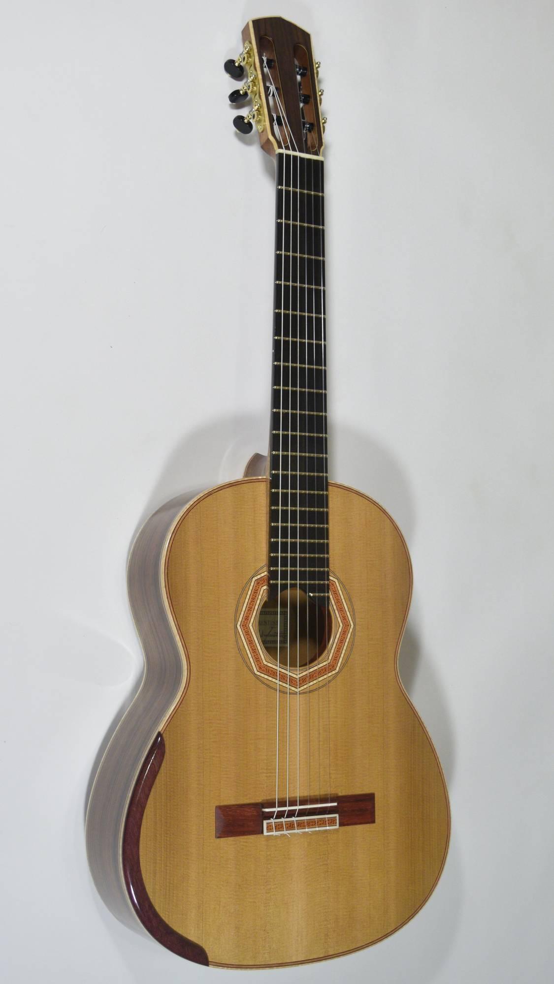 Guitar No. 38