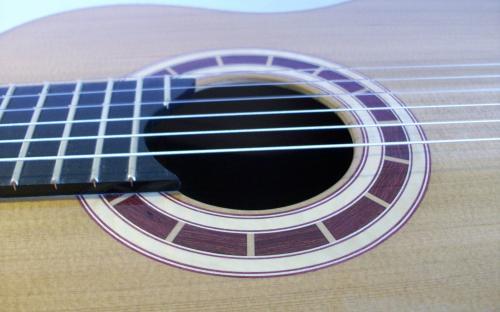Side Grain Guitar Rosette