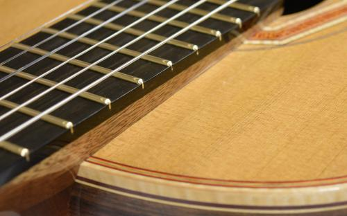 Large Gold Frets
