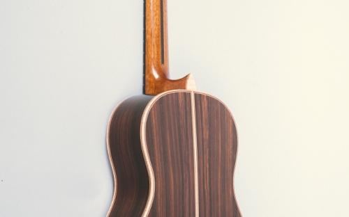 Ebony Neck Reinforcement