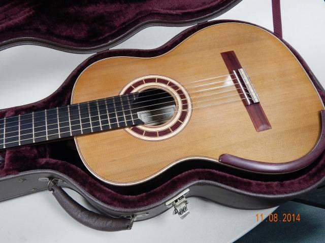 Guitar in its Case