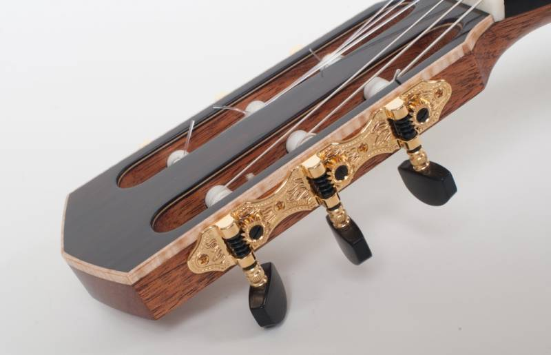 Shaller Tuners and Bound Headstock