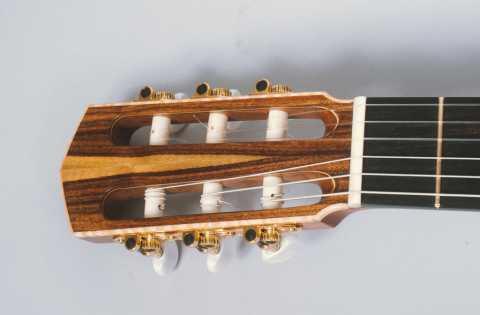 Amazon Rosewood Headplate