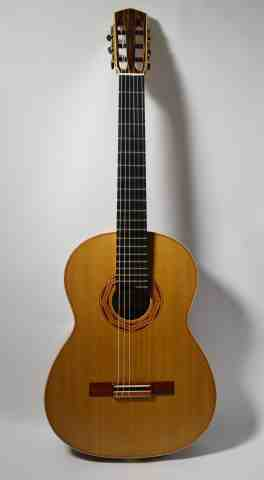 Guitar No. 40