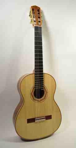 Guitar No. 39